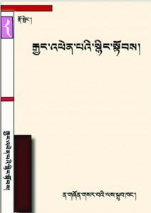 no-dong-11